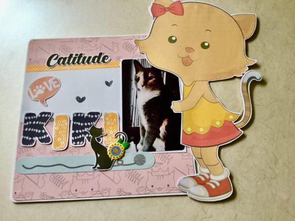 Scrapbook for cat